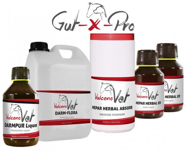 VulcanoVet Gut-X-Pro reha 60kg