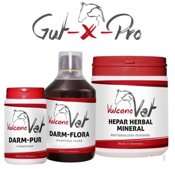 VulcanoVet Gut-X-Pro tolerance 30kg