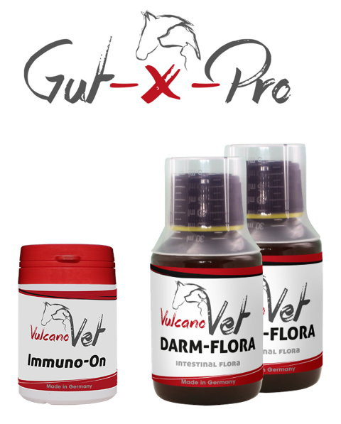 VulcanoVet Gut-X-Pro immun 10kg
