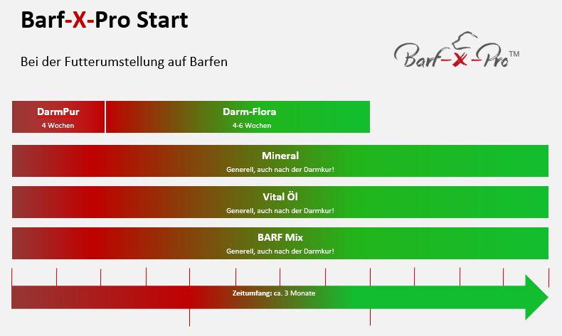 BARF-Startpaket