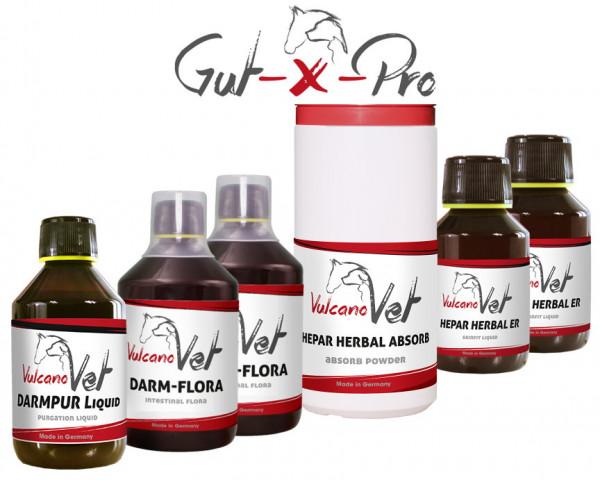 VulcanoVet Gut-X-Pro reha 50kg