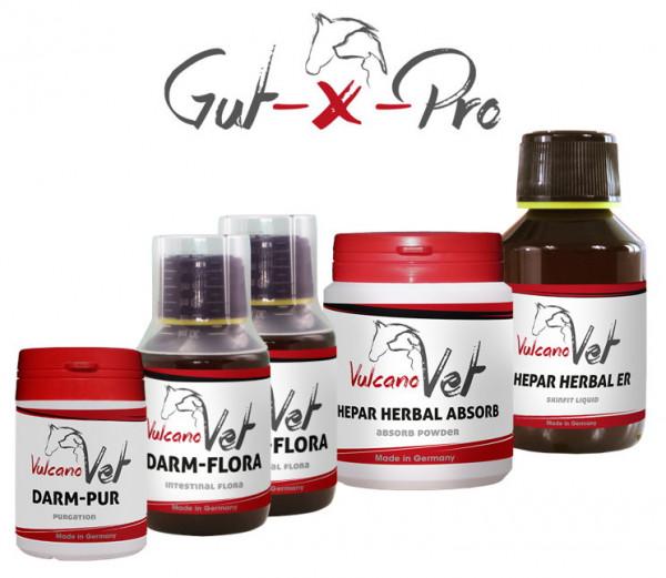 VulcanoVet Gut-X-Pro reha 10kg