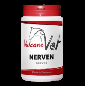 VulcanoVet Nerven
